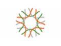 California Academy Of Sciences Promo Codes March 2020